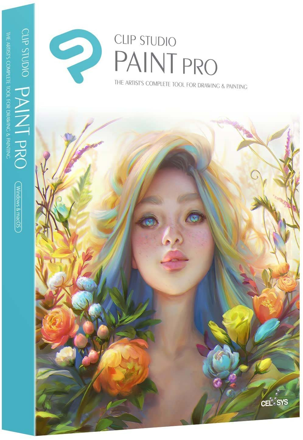Clip-Studio PAINT PRO (Grafiksoftware)