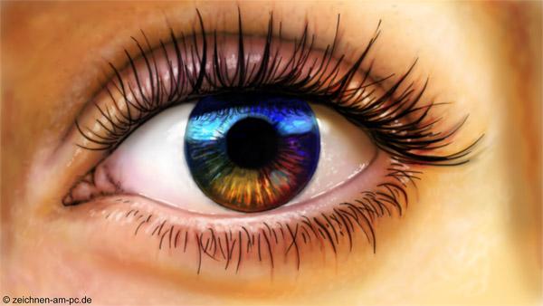 Auge, Pupille
